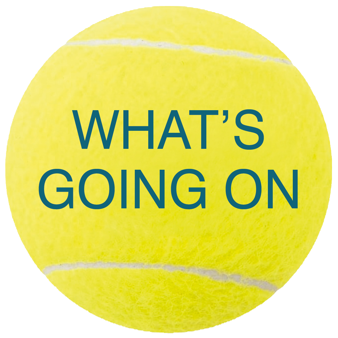Whats happening at Penzance Tennis Club